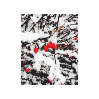 Baies étirées de rouge d'impression de toile toile tendue