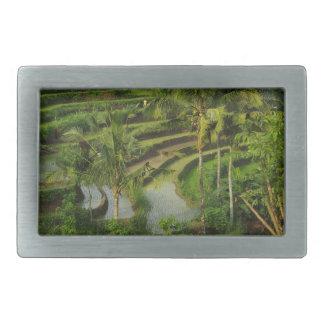 Bali - junge Terrassericefields und -palmen Rechteckige Gürtelschnalle