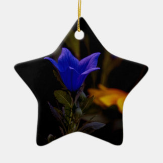 Ballon-Blumen Keramik Stern-Ornament