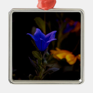 Ballon-Blumen Quadratisches Silberfarbenes Ornament