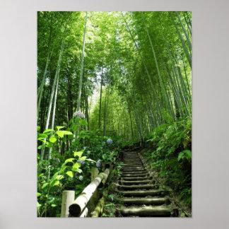Bambo Waldweg-Treppenschritte Druck Poster