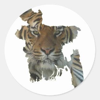 Bangladesch-Tiger Runder Aufkleber