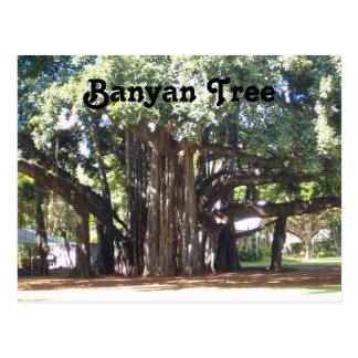 Banyanbaum Postkarte