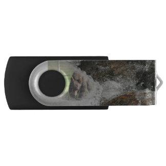 Bär im eisigen Fluss USB Stick