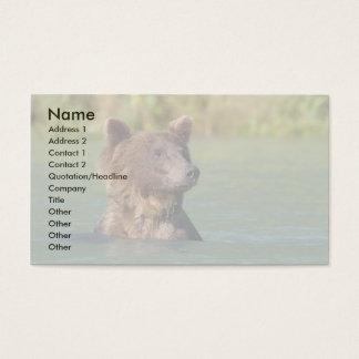Bär Visitenkarte