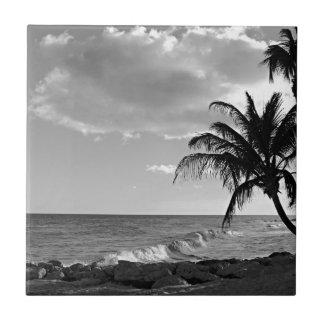 Barbados-Palme-Strand Fliese