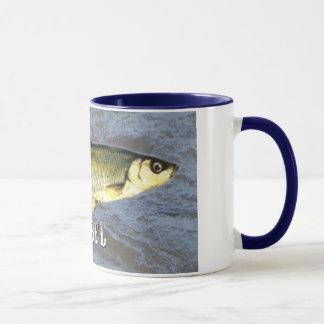 Barbel-Frischwasserfische, mit Wasser-Hintergrund Tasse