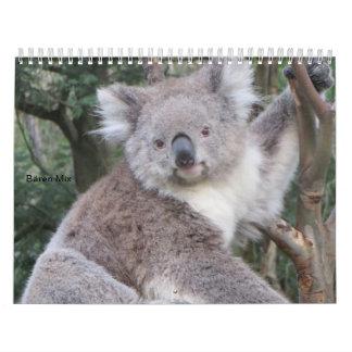 Bären-Mix Kalender