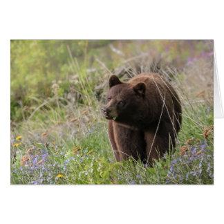 Bären von Alaska - leere Karte