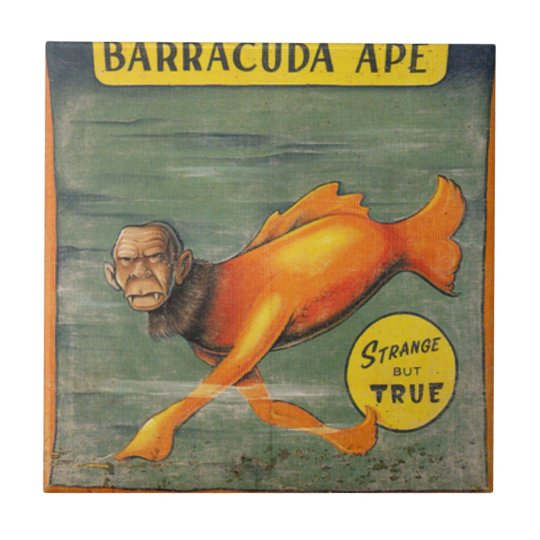 Barracuda-Affe Kleine Quadratische Fliese