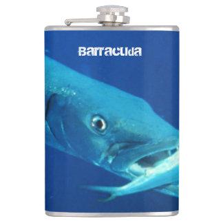 Barracuda-Fische