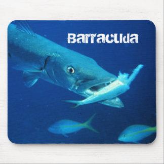 Barracuda-Fische Mauspads