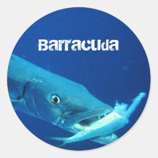 Barracuda-Fische Runder Aufkleber