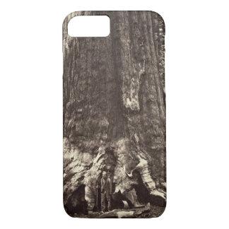 Basis des Graubär-Riesen, 'vom Yosemite-Buch iPhone 8/7 Hülle