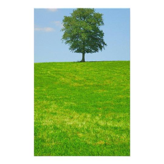 Baum auf einem Gebiet Briefpapier
