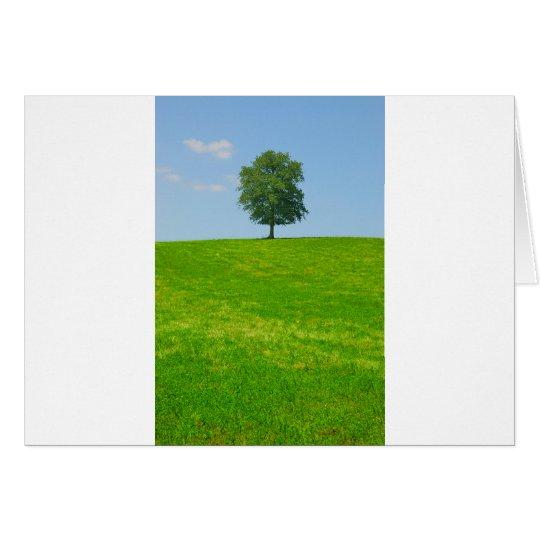 Baum auf einem Gebiet Grußkarte