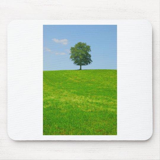 Baum auf einem Gebiet Mauspads