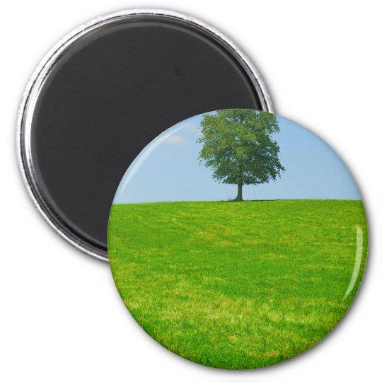 Baum auf einem Gebiet Runder Magnet 5,7 Cm