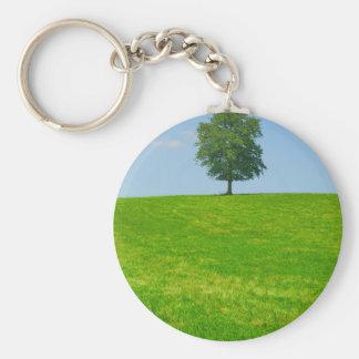 Baum auf einem Gebiet Schlüsselanhänger