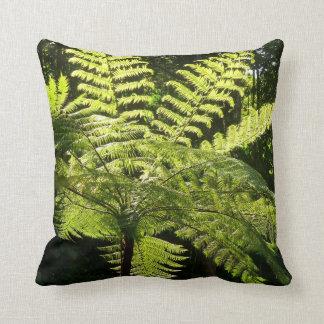 Baum-Farn im Regenwald Kissen