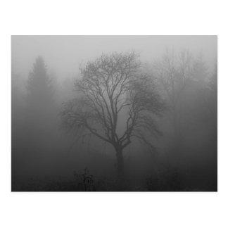 Baum im Nebel Postkarte