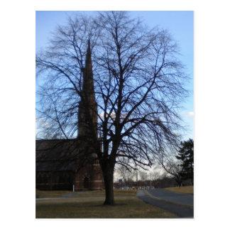 Baum im Stadtzentrum gelegenes Hartford Postkarte