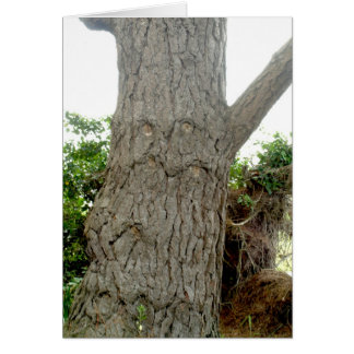 Baum-Mann Karte