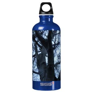 Baum-Silhouette-Fotografie-Makro Wasserflasche