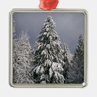 Baum-Weihnachtsverzierungs-Winter Snowy Silbernes Ornament