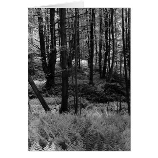 Bäume, Farne Karte