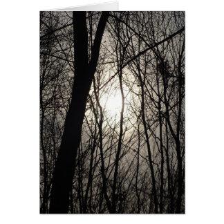 Bäume im Schatten Karte