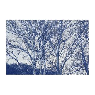 Bäume im Winter - Cyanotype Effekt Acryl Wandkunst
