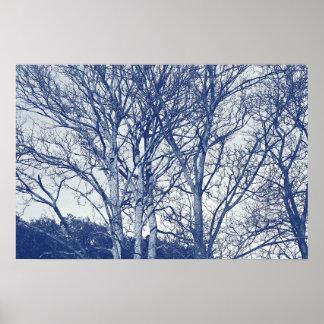 Bäume im Winter - Cyanotype Effekt Poster