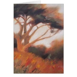 Bäume Kaliforniens Monterey Zypresse Karte