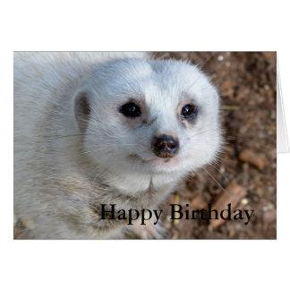 Baumwolle das weiße Meerkat, Geburtstag Karte
