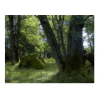 Bayerische Waldpostkarte Postkarten