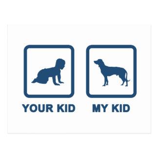 Bayerischer Gebirgsjagdhund Postkarten