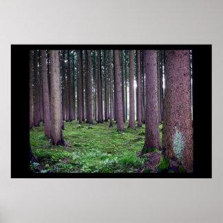 Bayerischer Wald Poster