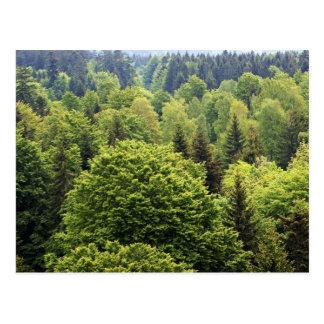 Bayerischer Wald Postkarten
