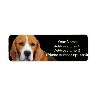 Beagle-Adressen-Aufkleber Rücksende Aufkleber