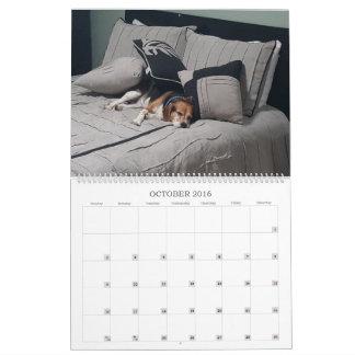 Beagle-Kalender 2017 Abreißkalender