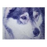 Beau portrait enroué de chien carte postale