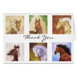 Beaucoup de carte de remerciements de chevaux