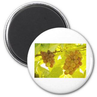 Beaux-arts de vigne aimant pour réfrigérateur