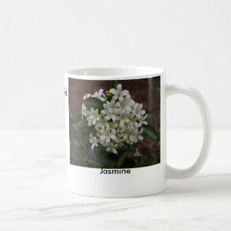 Bedeutung in der Natur: Jasmin Kaffeetasse
