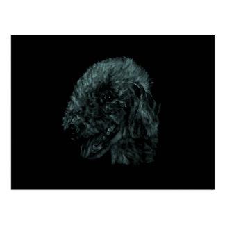 Bedlington Terrier Postkarte