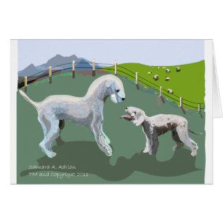 Bedlington Terrier - Treffen Ihres Heldes Karte