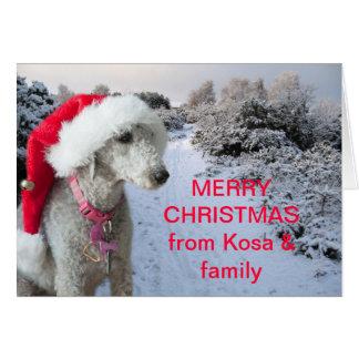 Bedlington Terrier Weihnachtskarte Karte