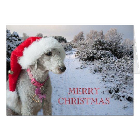 Bedlington Terrier Weihnachtskarte Mitteilungskarte