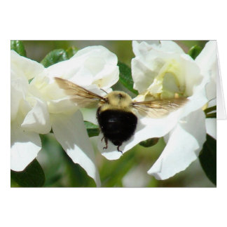 Bee'n beschäftigt mitteilungskarte